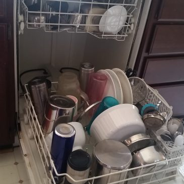Get rid of occasional odor coming from dishwasher