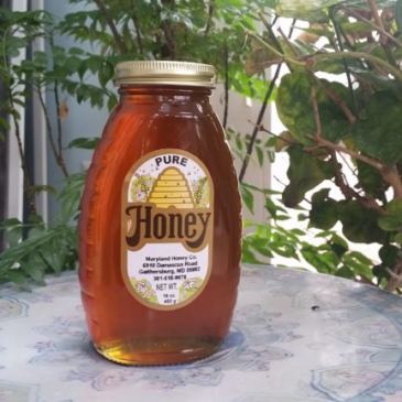 Honey Expert Carla Marina Marchese